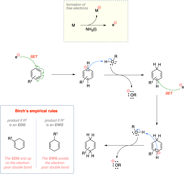 Mechanism of the Birch reduction. Formation of free electrons. Birch's empirical rules: The EDG end up on the electron-poor double bond while The EWG avoids the electron-poor double bond.