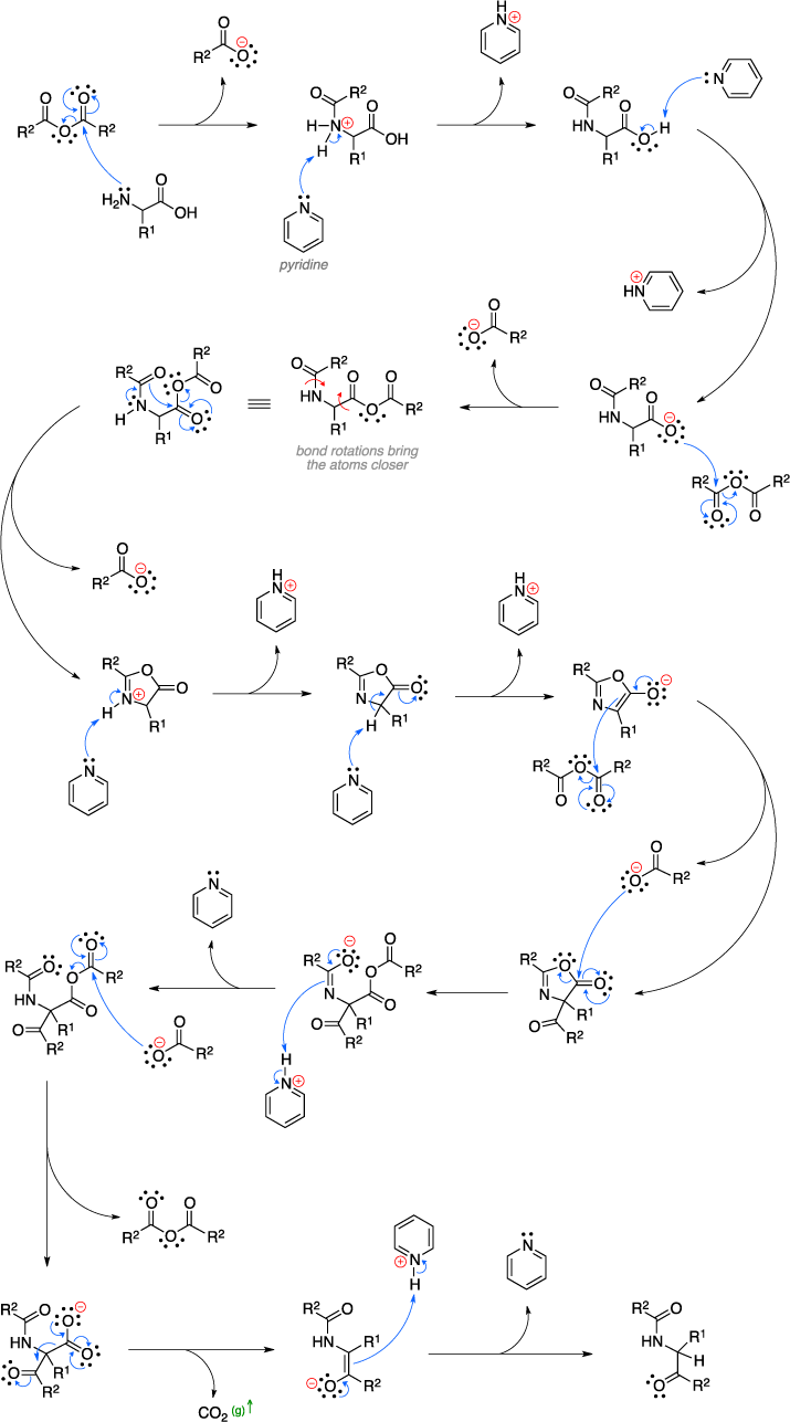 Mechanism of the Dakin-West reaction.