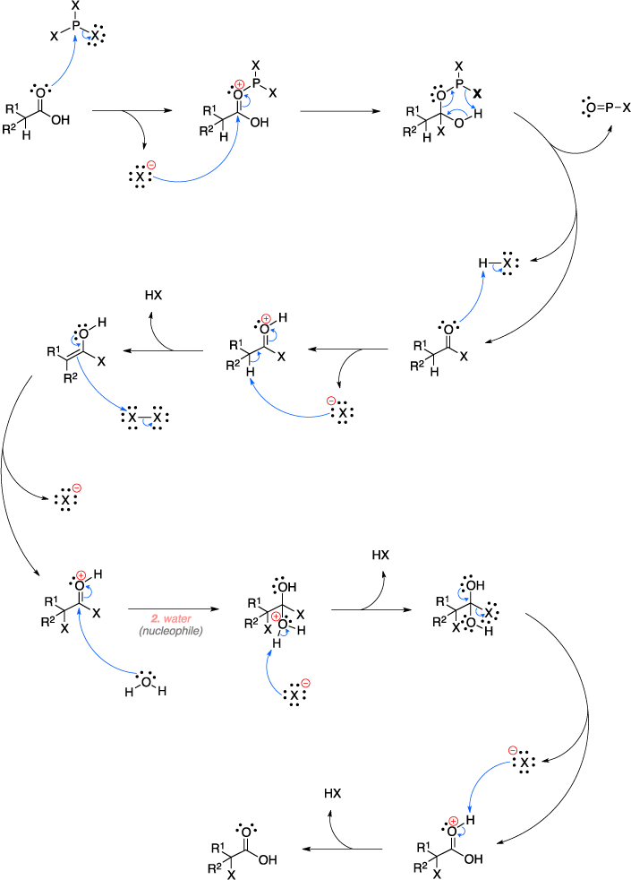 Mechanism of the Hell-Volhard-Zelinsky reaction. Step 2 is attack of a water nucleophile.