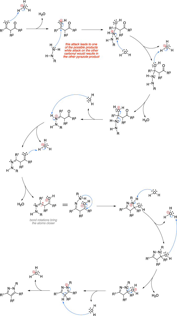 Mechanism of the Knorr pyrazole synthesis. This attack leads to one of the possible products while attack on the other carbonyl would results in the other pyrazole product.