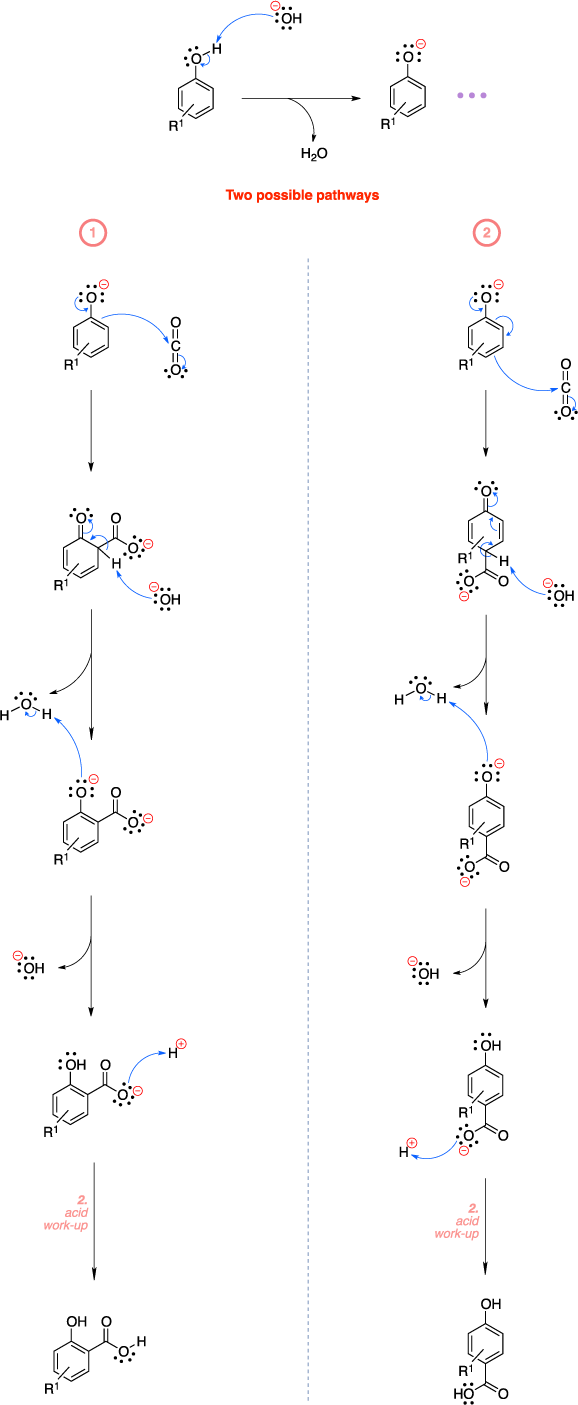 Mechanism of the Kolbe-Schmitt reaction. Two possible pathways lead to product.