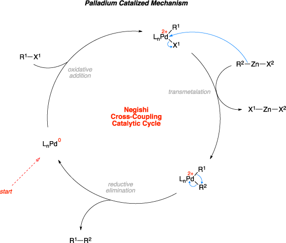 Mechanism of the Negishi cross-coupling. Negishi Cross-Coupling Catalytic Cycle steps include: oxidative addition, transmetalation, and reductive elimination.