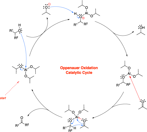 Mechanism of the Oppenauer oxidation. Oppenauer Oxidation Catalytic Cycle.