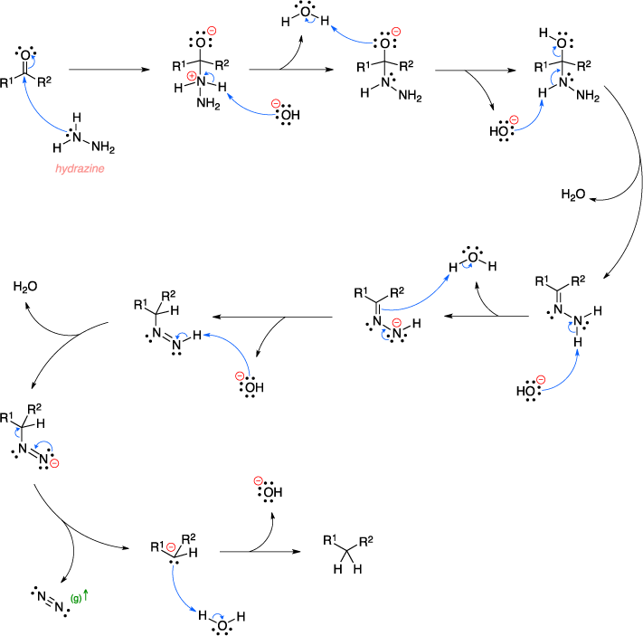 Mechanism of the Wolff-Kishner reduction.